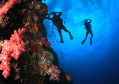 tauchen-mafia-bay-scuba-diving-krk-croatia